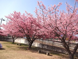 久原公園01-5