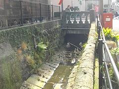 ししとき川04-1