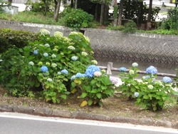 大村公園02-8