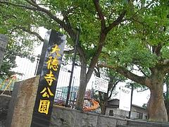 大徳寺05