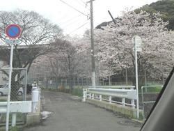 小ヶ倉水園01