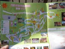 亜熱帯植物園03-6
