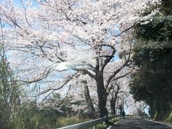 和三郎公園02