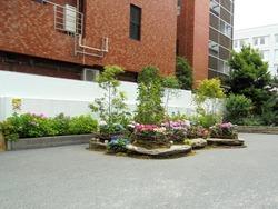 中通り01-5