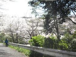 三川公園01-2