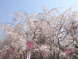 大村公園03