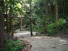 松露渕01-2