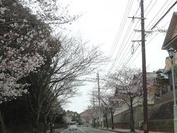 小江原01