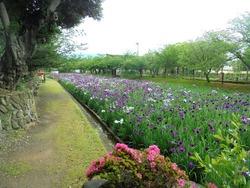 大村公園02-5