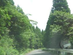 多良岳横断道路01-4