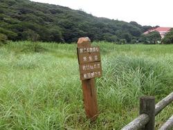 原生沼01