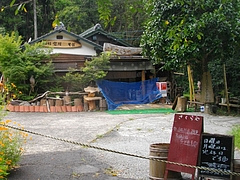 慶師野05