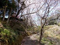 琴海中央公園02-6