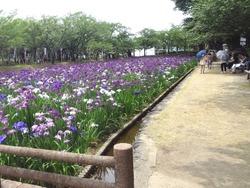 大村公園01-5