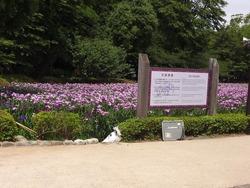 大村公園01-2