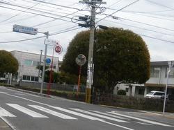 円融寺庭園00