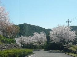 伊佐ノ浦公園03