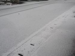 雪01-2
