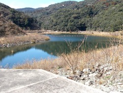宮崎ダム01