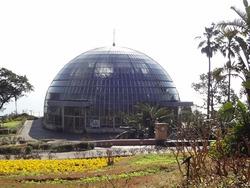亜熱帯植物園02-5