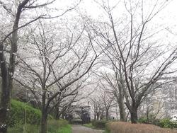 西山ダム01-2-2