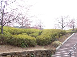 西海橋公園02-3