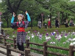 花菖蒲まつり02-5