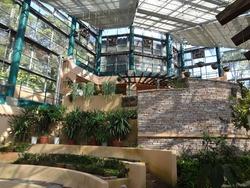 亜熱帯植物園03-5