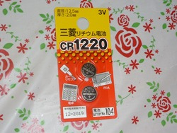 P1240341
