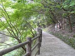 小ヶ倉ダム02-4
