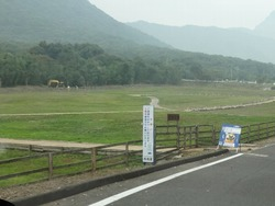 芝桜公園03
