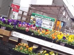 コメリ時津01-2