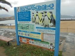 ペンギン水族館03