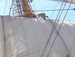 帆船03-7