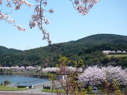 伊佐ノ浦公園02-8