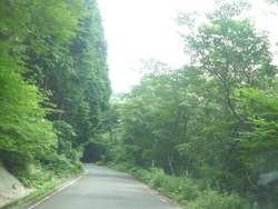 多良岳横断道路02-1