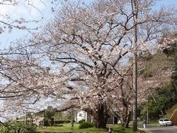 和三郎公園01-1