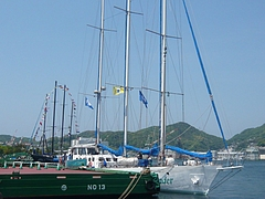 帆船まつり05-3
