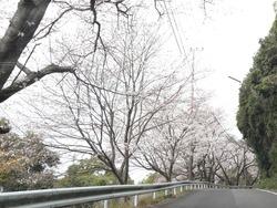 和三郎公園01-3