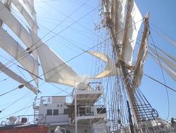 帆船03-6