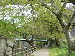 小ヶ倉ダム02