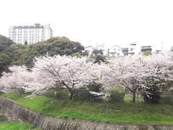 鹿尾川公園01-2