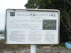 牧島03-8