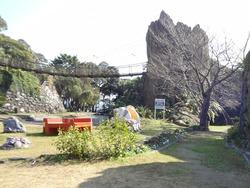 亜熱帯植物園03-9