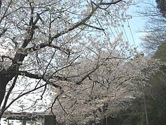 和三郎公園02-2