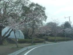 稲佐山01-3