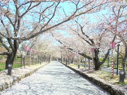大村公園03-6