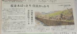 線路沿いの桜01