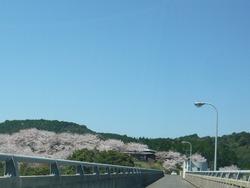 伊佐ノ浦公園03-9