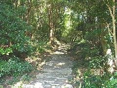 木鉢神社04